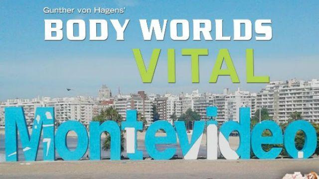 La exposición Body Worlds Vital continúa hasta marzo