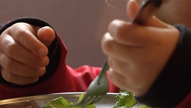 Primaria realizará estudio para conocer estado nutricional de escolares