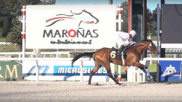 El Abanderado ganó el Gran Premio Nacional (URU-G1)