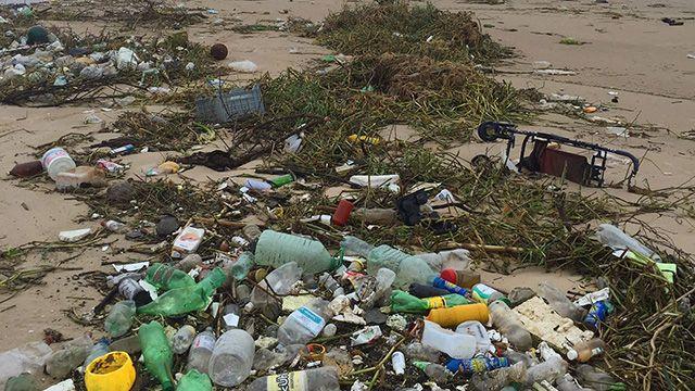 Impresionante camino de basura en Carrasco: 4.5 km a lo largo de la costa