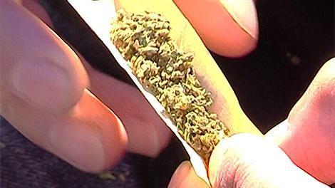 Seis de cada 10 uruguayos en desacuerdo con la venta de marihuana