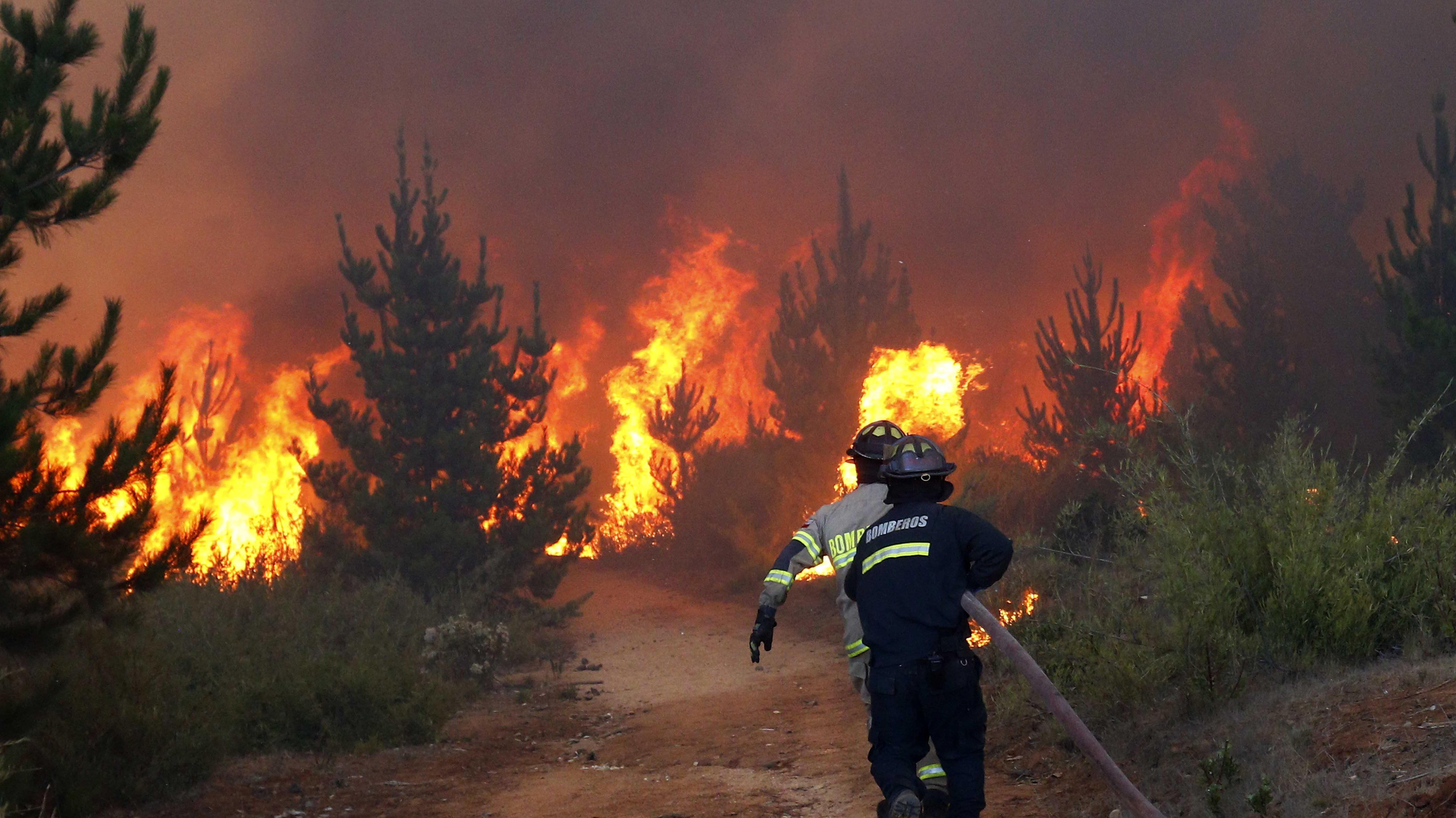 Alerta roja en Viña del Mar y Valparaíso por incendio forestal