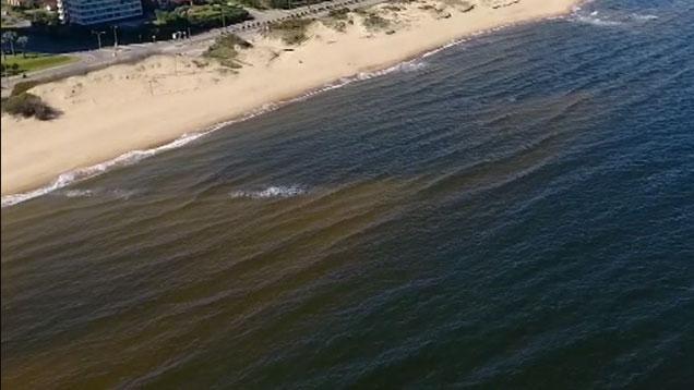 Rumor sobre playas de Maldonado en mal estado terminó en denuncia penal