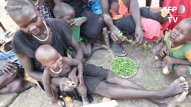 Más de 270.000 niños desnutridos: el Estado declara hambruna en Sudán