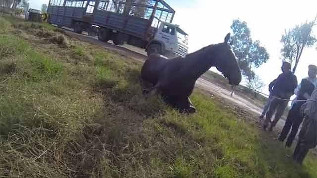 Amenaza en Lascano: Andate, tengo el revólver en la guantera del auto
