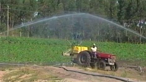 Agua contaminada provocó que productores familiares perdieran sus cosechas