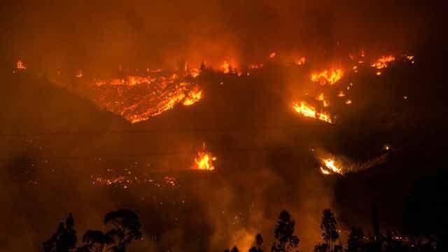 Cuatro muertos en Chile en los incendios forestales más graves del país