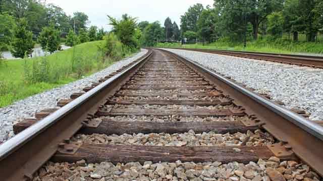 UPM pretende transportar madera a 70km/hora en vías férreas uruguayas