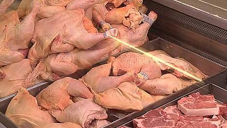 Suspenden importación de pollo de Chile por brote de gripe aviar