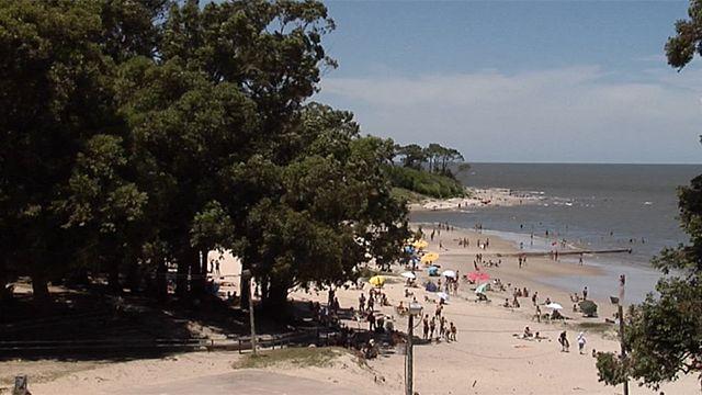 Temporada de verano récord con cambios en los hábitos de los turistas