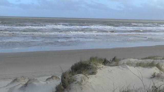 Turista francesa fue atacada por cuatro perros en una playa de Rocha