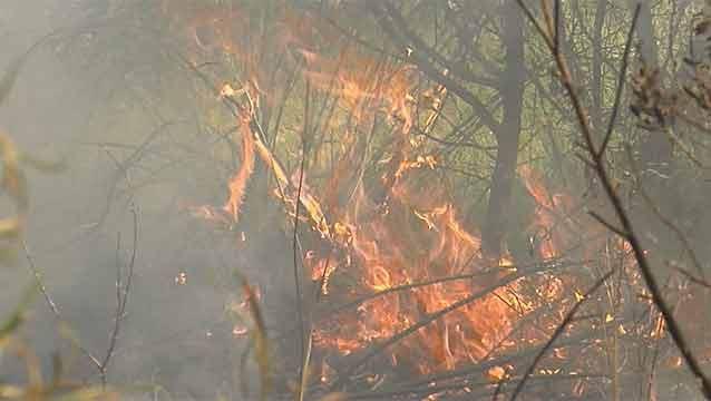 Bomberos: este será uno de los peores veranos en cuanto a riesgo de incendio