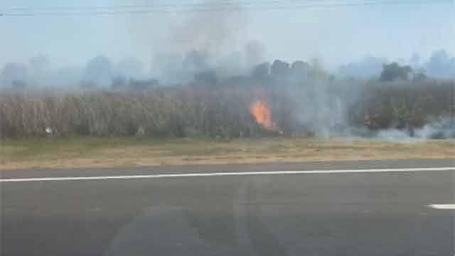 Bomberos controla incendio que afectó 35 hectáreas en Guazuvirá