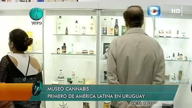 Abre sus puertas el primer Museo del Cannabis de Sudamérica