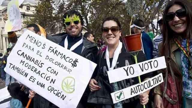 El plan marihuana del Estado se postergó para el año 2017