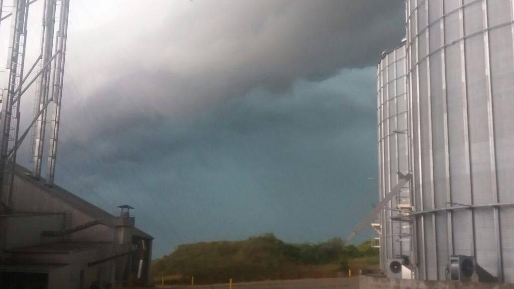 Voladura de techos, árboles y red eléctrica por tormenta en Paysandú