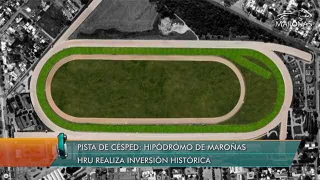 Histórica inversión en Maroñas, comienzan a construir una pista de césped