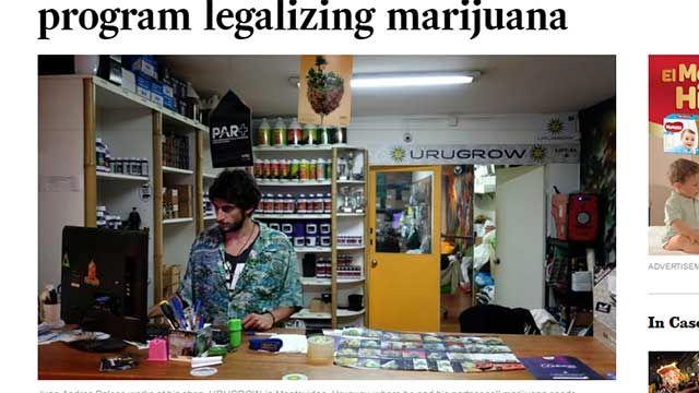 Titular del Centro de Farmacias propone vender cannabis estatal a turistas
