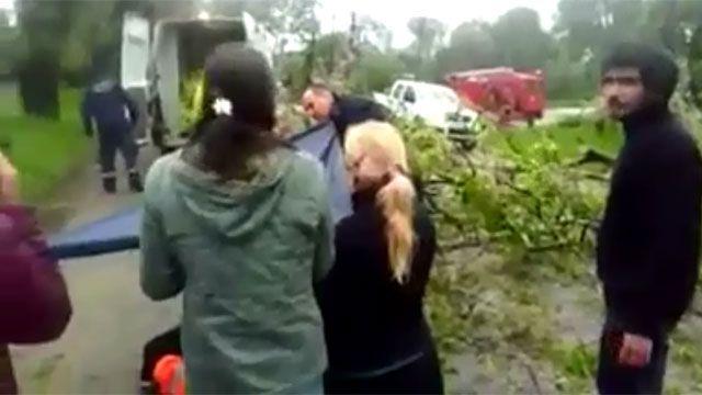 Una mujer resultó herida luego que un árbol le cayera encima en Rocha