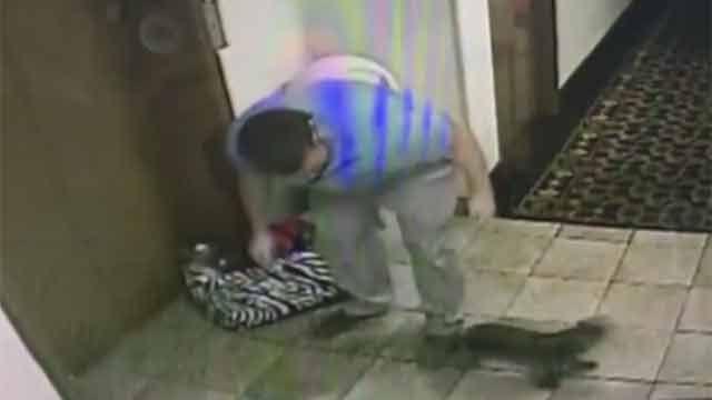 Hombre salvó a un perro a punto de morir ahorcado en un ascensor