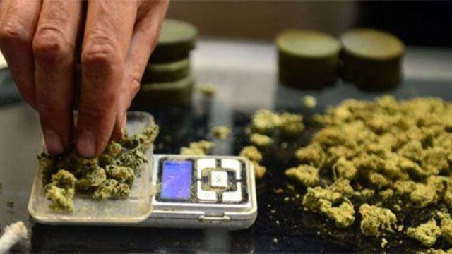 Plan para distribuir marihuana trancado por un conflicto en el Correo