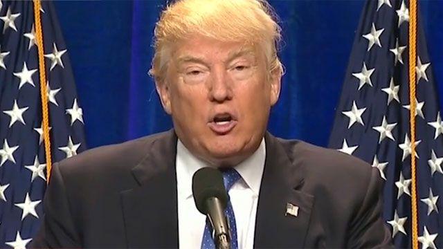 Trump contraataca y critica a periodistas y políticos de todo pelo y color
