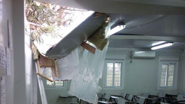 Un árbol cayó en la UTU de Barros Blancos y destrozó un salón