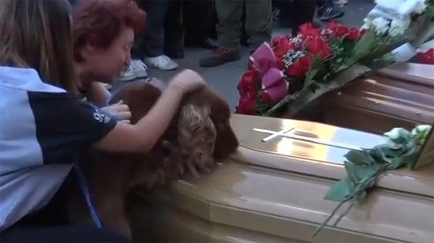 Mascota no quiso abandonar al dueño tras su muerte en el sismo de Italia
