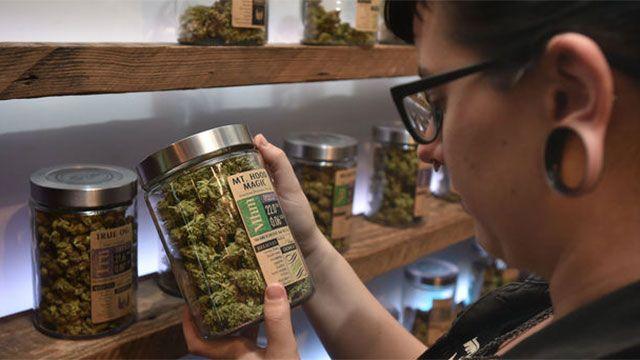 Distribución de marihuana: no hay farmacias disponibles en 8 departamentos