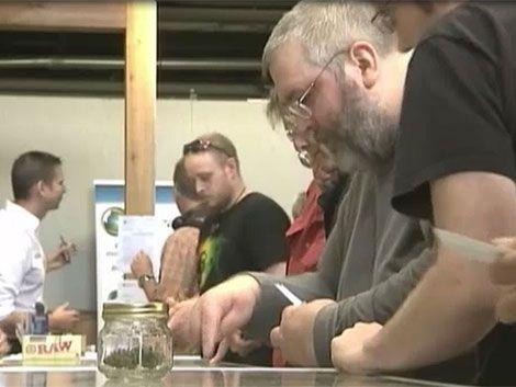 Negocio millonario:desde hoy venden marihuana legal en Washington