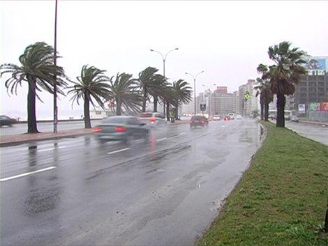 Meteorología emitió alerta amarilla por vientos fuertes en el sur