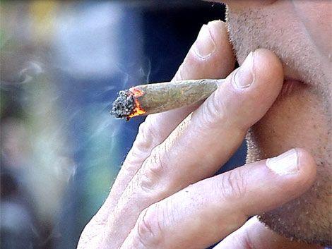 Exclusivo: el decreto reglamentario de la ley de marihuana
