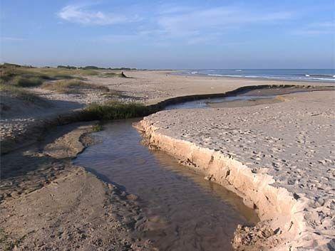 Se recupera la joven que fue baleada en la playa de Solymar