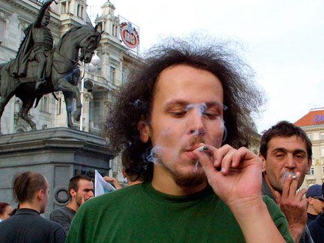 Expertos opinan a favor y en contra de legalizar la marihuana