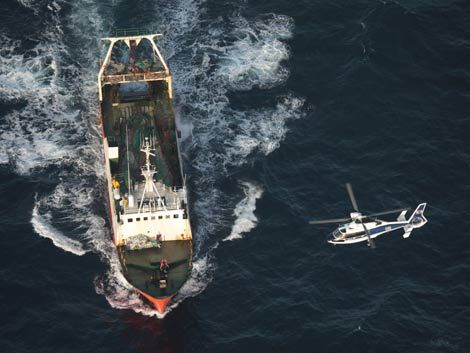 Tripulante herido en altamar fue rescatado por la FFAA