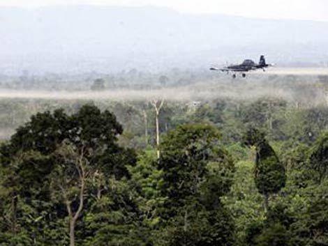 Cinco policías intoxicados por una fumigación en Maldonado