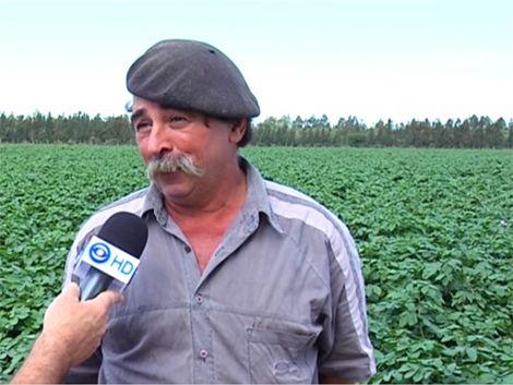 Reclusos cultivan papas para todas las cárceles del país