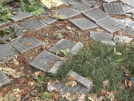 IM trasladará costos de reparaciones de veredas a los vecinos