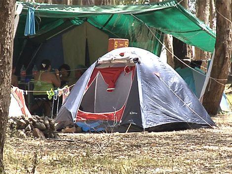 Rama de eucalipto mata a una mujer en un camping