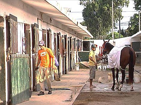 Jockeys y cuidadores de Maroñas afectados por la suspensión