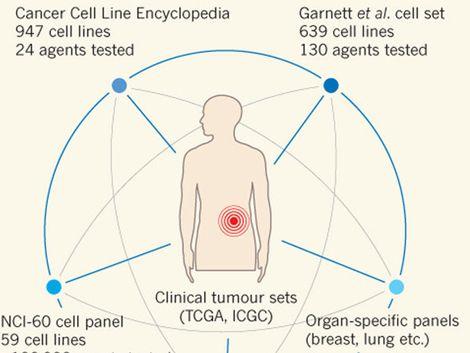 Científicos lanzan la enciclopedia del cáncer