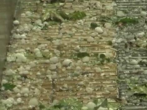 Granizada rompió centenar de techos y mató palomas en T. y Tres
