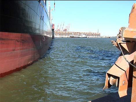 Paro de guardias de seguridad por muerte en el Puerto