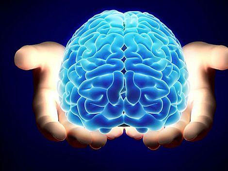 El cerebro depende un 75% del estilo de vida y 25% de lo genético