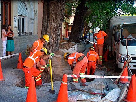Espera desde el 2010 que la IMM retire el árbol de su entrada