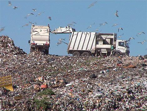 Cuatro intendentes viajan a Italia por procesamiento de residuos