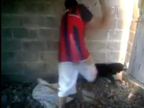 Menores que mataron a una perra están alojados en INAU