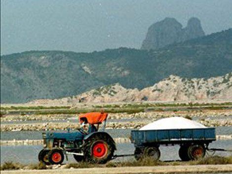 Uno de cada cinco latinoamericanos sufre hipertensión por la sal