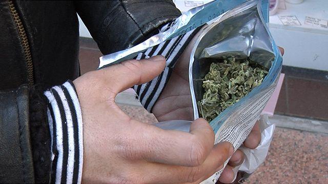 Marihuana legal y sistema financiero: BCU aguarda medidas concretas de EEUU