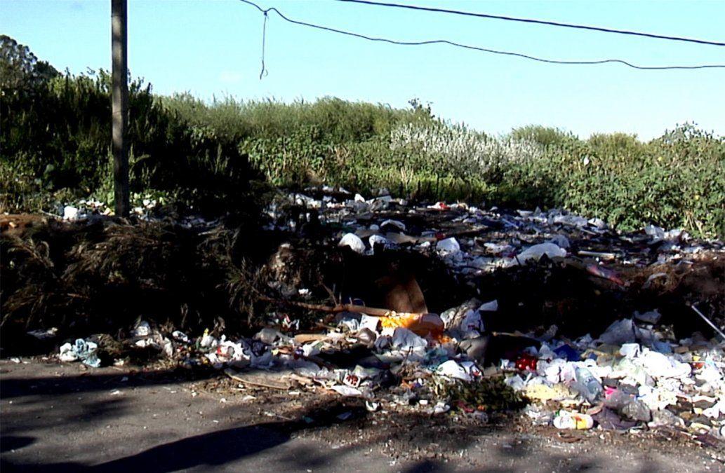La lucha contra los basurales endémicos en Montevideo
